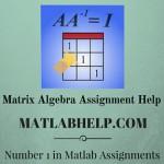 Matrix Algebra Assignment Help