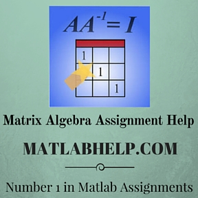 Matrix Algebra Assignment Help