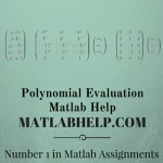 Polynomial Evaluation Assignment Help