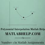 Polyspace Code Verification Matlab Help, Matlab Assignment